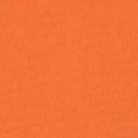 Canson Mi-Teintes Paper Sheet 160 gsm 453 Orange