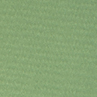 Canson Mi-Teintes Paper Sheet 160 gsm 475 Apple Green