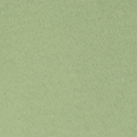 Canson Mi-Teintes Paper Sheet 160 gsm 480 Light Green
