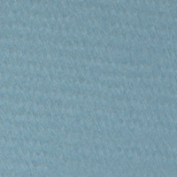 Canson Mi-Teintes Paper Sheet 160 gsm 490 Light Blue