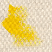 Unprimed Double-Filled Canvas 10 duck