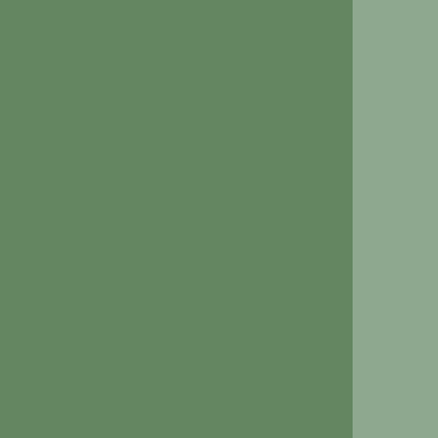 Holbein Artists' Oils Green Grey