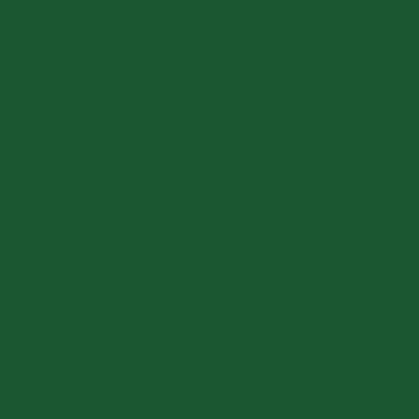 Opus Essential Oil Colours Chromium Oxide Green