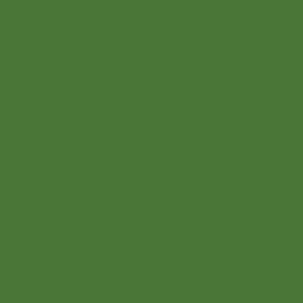 Opus Essential Oil Colours Sap Green