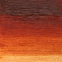 Winton Oil Colours Burnt Sienna